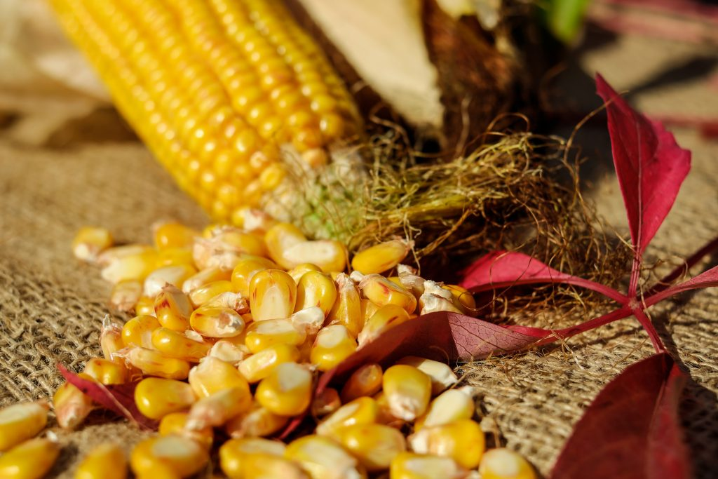 How to Make Hulled Corn Recipe