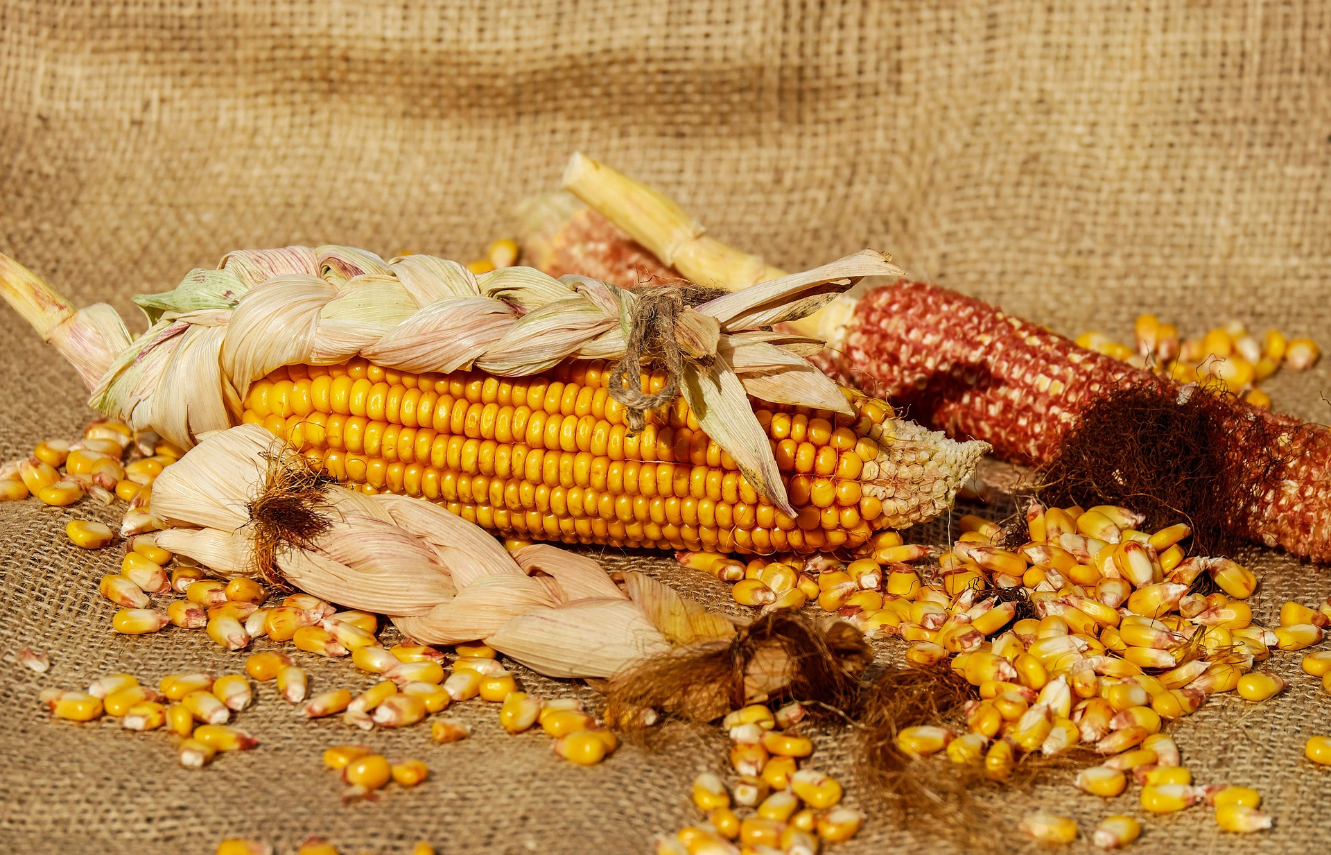 Parched Corn Recipe - Little House Pioneer Recipe